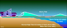 Fig 2. Illustration showing different wave heights on a shoreline. Image courtesy of NOAA.