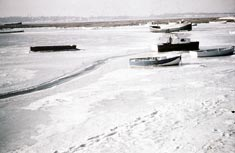 Boats frozen in ice on Poole Harbour in 1963 (courtesy of M. Nimmo)