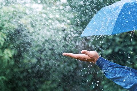 Its raining!