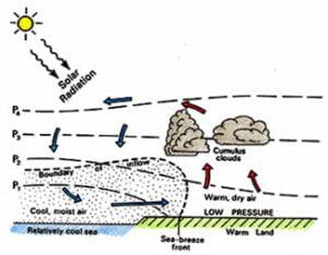 Sea Breeze Diagram